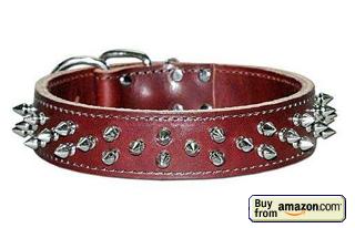 Latigo Dog Collar